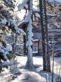 Casa vieja de la granja en bosque Fotografía de archivo