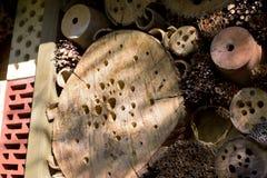 Casa vieja del insecto en una granja Imagen de archivo