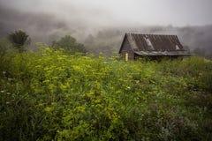 Casa vieja en bosque fotografía de archivo