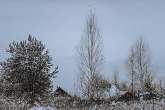 Casa vieja en la nieve Imagen de archivo libre de regalías