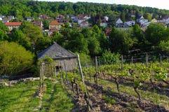 Casa vieja hermosa del vino rodeada con las colinas del viñedo Campos de la uva cerca de Wurzburg, Alemania Foto de archivo