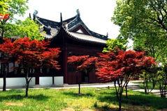 Casa y árbol Fotografía de archivo libre de regalías