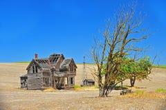 Casa y árbol abandonados Imagenes de archivo
