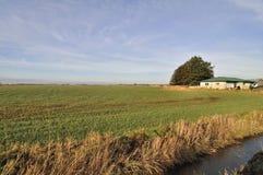Casa y campo de la granja fotografía de archivo