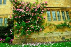 Casa y flores inglesas hermosas en Cotswolds, Inglaterra, Reino Unido Imagen de archivo libre de regalías