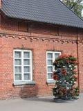 Casa y flores rojas foto de archivo
