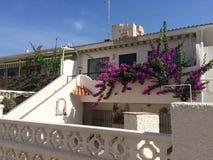 Casa y flowera blancos Imagen de archivo