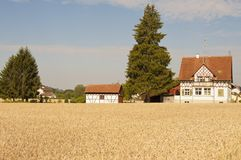 Casa y granero de la granja con el campo de trigo Fotos de archivo