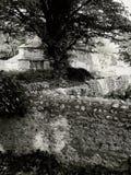 Casa y hacia fuera edificios de la granja de Deralict fotos de archivo libres de regalías