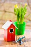 Casa y narciso en potes, pala del pájaro contra jardín en primavera Fotos de archivo libres de regalías
