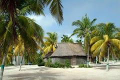 Casa y palmeras del maya Imagen de archivo libre de regalías