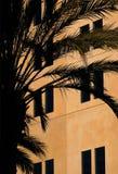 Casa y una palmera Imágenes de archivo libres de regalías