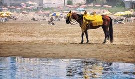 Casablanca beach, Morocco Royalty Free Stock Images