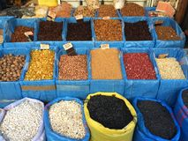 spices and seasonings typical of Morocco stock images