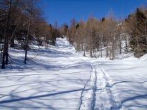 2013_Casaccia, Alpe Gana, Segno di Pian, Casaccia fotografia stock