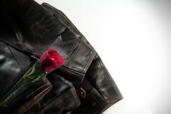 Casaco de cabedal e rosa do vermelho Imagem de Stock Royalty Free
