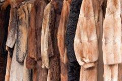 Casacos de pele animais Foto de Stock Royalty Free