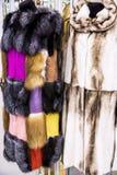 Casacos de pele fêmeas brilhantes Foto de Stock Royalty Free