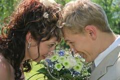 Casado Fotografia de Stock Royalty Free