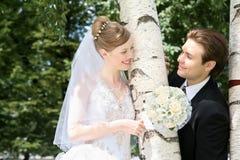 Casado cerca del abedul Imagen de archivo