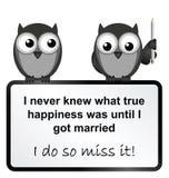Casado feliz ilustración del vector