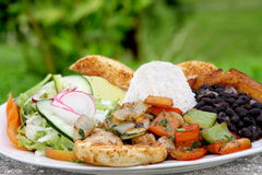 Free Casado - Traditional Food In Costa Rica Stock Photo - 10207310