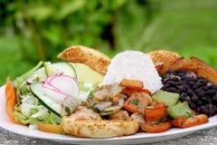 Casado - traditioneel voedsel in Costa Rica Stock Foto