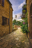 Casale Marittimo old stone village in Maremma. Picturesque flowery street and traditional houses. Tuscany, Italy. Casale Marittimo old stone village in Maremma royalty free stock photography