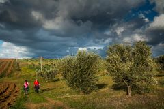 Trekking route towards in Casale M.mo, Tuscany stock photos