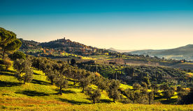 Casale Marittimo village and landscape in Maremma. Tuscany, Ital Stock Image