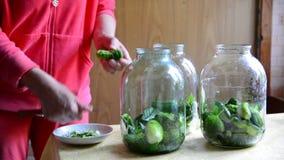 Casalinga che prepara i cetrioli inscatolati casalinghi per l'inverno stock footage