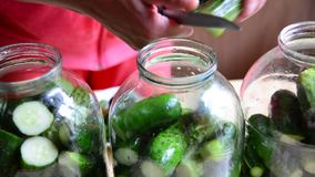 Casalinga che prepara i cetrioli inscatolati casalinghi per l'inverno video d archivio