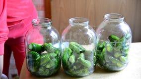 Casalinga che prepara i cetrioli inscatolati casalinghi per l'inverno archivi video