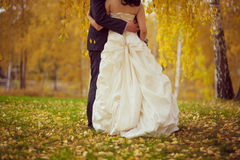 casamento abraço do marido e da esposa Outono dourado Fotos de Stock