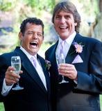 Casamento alegre - Champagne e riso imagens de stock