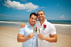 Casamento alegre em uma praia Imagens de Stock Royalty Free