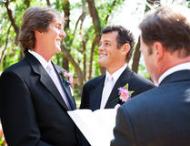 Casamento alegre - junto para a vida fotografia de stock royalty free