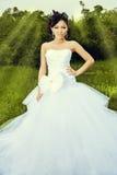 Casamento bonito Fotos de Stock
