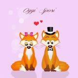 Casamento das raposas Fotografia de Stock