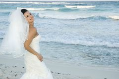 Casamento de praia do Cararibe - levantamento da noiva Fotografia de Stock Royalty Free