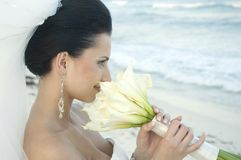 Casamento de praia do Cararibe - noiva com ramalhete fotos de stock