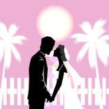 casamento do cartão Imagem de Stock