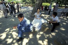 CASAMENTO DO PARQUE DE SOUTHKOREA SEOUL TAPKOL fotos de stock royalty free