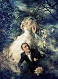 Casamento enevoado fotos de stock