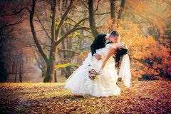 Casamento disparado dos noivos no parque Foto de Stock