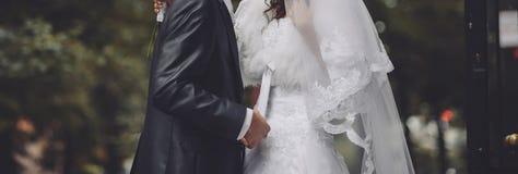Casamento feliz, noivos junto Imagens de Stock