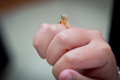 Casamento judaico anel Fotografia de Stock Royalty Free