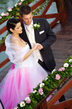 Casamento: Noiva e noivo fotografia de stock