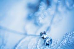 Casarse el adorno hermoso en el vestido blanco Fotografía de archivo libre de regalías