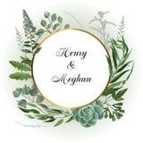 Casarse el marco herbario Imagen de archivo